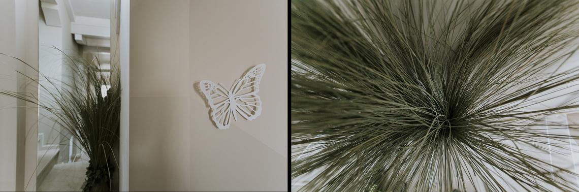 decoro farfalla dettagli