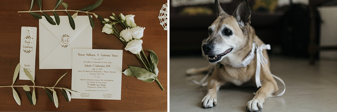 inviti cane dog cerimonia